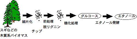 S0002_Tanabe