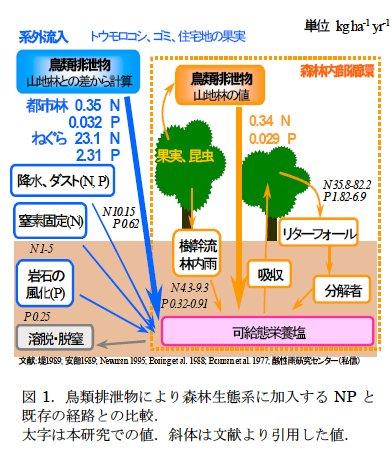 藤田素子: 第55回定例オープンセミナー(2007年7月4日) 図 1