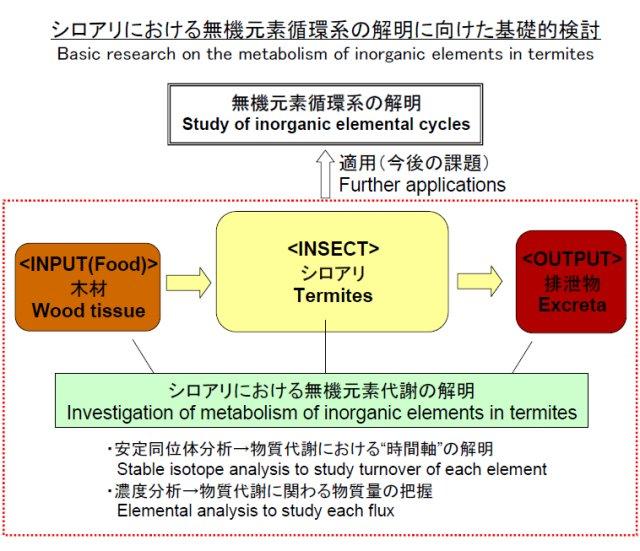 陀安一郎: 第62回定例オープンセミナー(2007年11月14日)