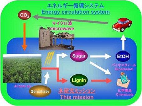 大橋康典: 第95回定例オープンセミナー(2009年7月8日)