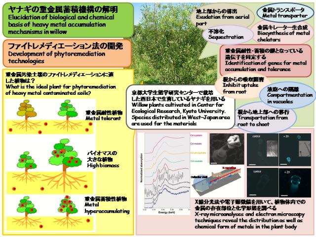 原田英美子: 第94回定例オープンセミナー(2009年6月24日)