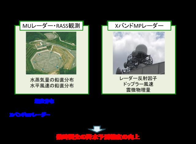 山口弘誠: 2010(平成22)年度 生存圏科学萌芽研究