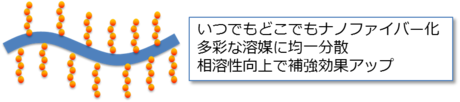 伊福伸介: 2012(平成24)年度 生存圏科学萌芽研究