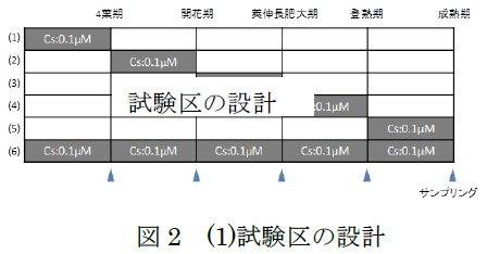 二瓶直登: 2015(平成27)年度生存圏ミッション研究 図 2