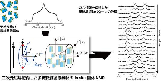 久住亮介: 2019(令和元)年度生存圏科学萌芽研究 図