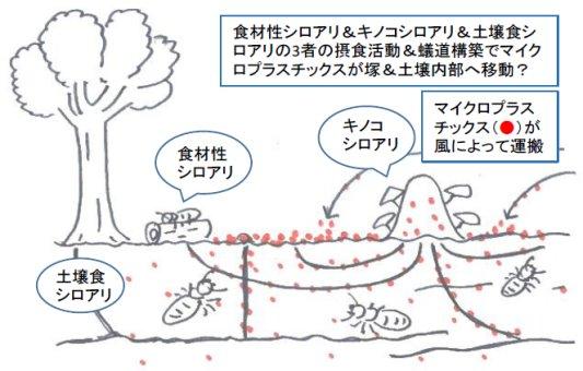 吉村剛: 2020(令和2)年度生存圏ミッション研究 図 1